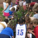 Outside for A Better Inside Building Butterfly Gardens in Lawrence Schools