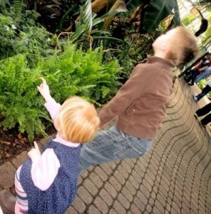 kids looking for butterflies